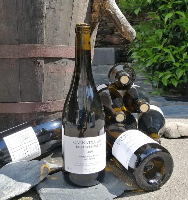 Vino - 12 botellas